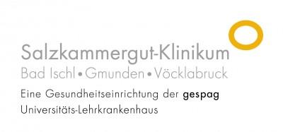 Logo Krankenhaus Bad Ischl Gmunden Vöcklabruck Referenz Laborsoftware