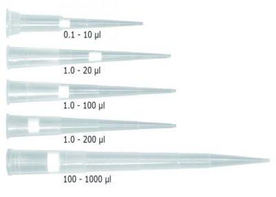 Filterspitzen